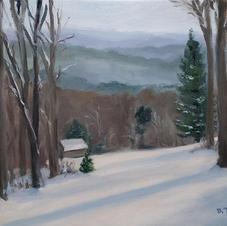Backyard View In Winter