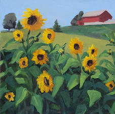Past The Sunflowers & Up The Hill