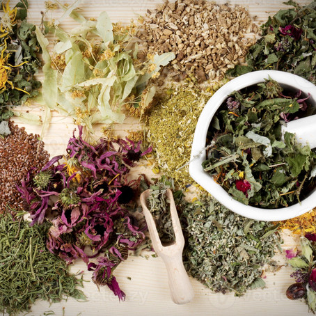 PHYTOTHERAPY: INTERVIEW WITH OUR EXPERT PAOLA