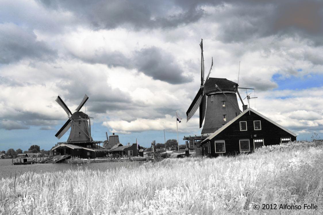 Wind Mills - Holland