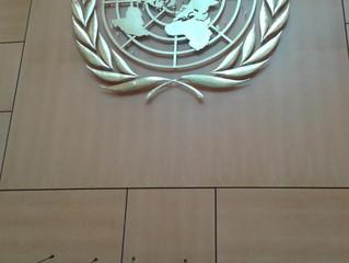 WFWP UN Internship report
