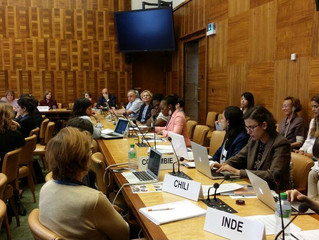Family Solutions to World Problems, UN Geneva