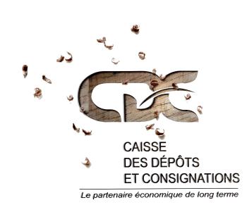 CDC GABON