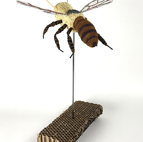 Grandmother Bee - back