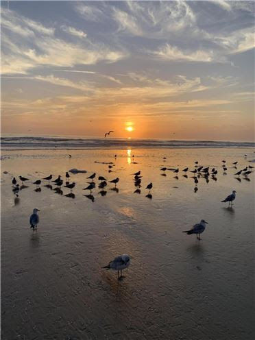 daytona beach inn.jpg