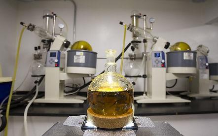 extration cannabis.jpg