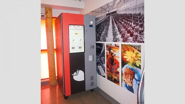 Marijuana-vending-machine.jpg