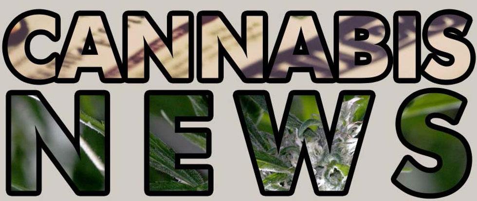 cannabis news.jpg