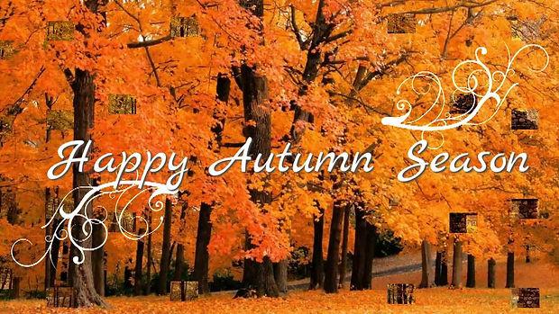 happy fall 2020.jpg