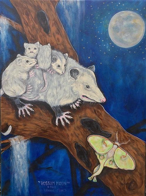 """"""" Possum Moon"""""""