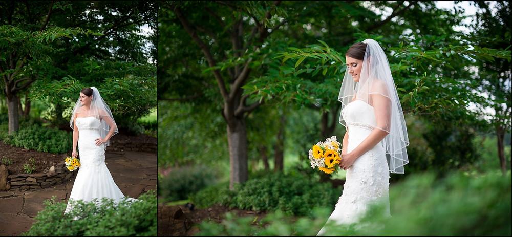 Richmond-virginia-wedding-photographer-Kings_Family_Vineyard_0097.jpg