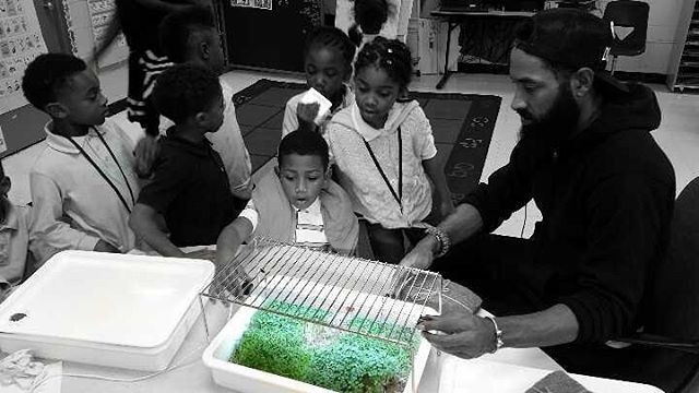 The kids are learning about how light helps the micro greens grow.