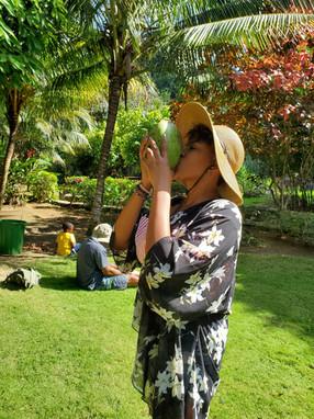 Fresh Coconut in the Secret Garden