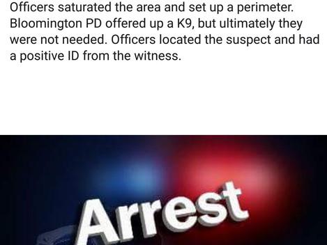 Local Crime: Criminal Caught!