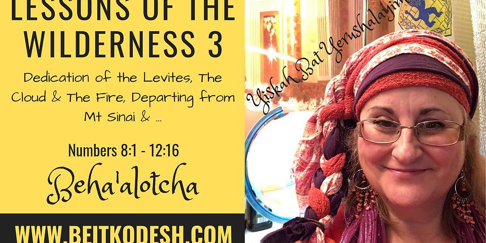 Torah Portion - 'BEHA'ALOTCHA' @ Yiskah Bat Yerushalayim's YouTube Channel