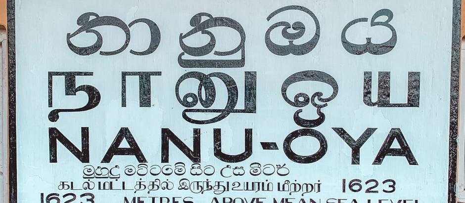 Train Ride From Kandy To Nuwara Eliya - Was It Worth It?