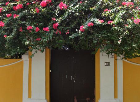 Doors of Pondicherry
