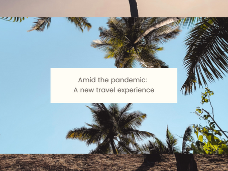 Amid the pandemic: A new travel experience