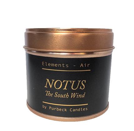 Notus - Tin