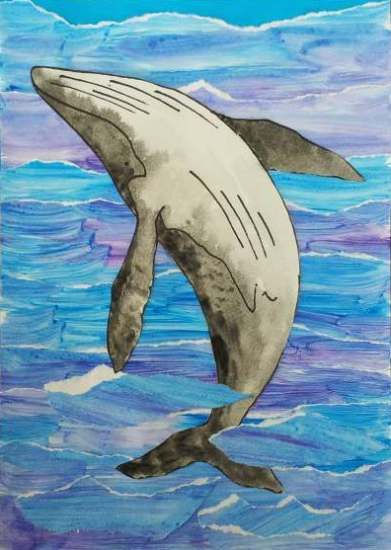 Whale Tear Art