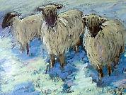 Winter-Sheepunframed2.jpg