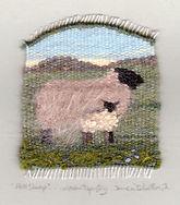 Hill-Sheep.jpg