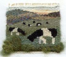 pastures-new2.jpg