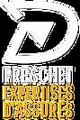 freschet-expertise-logo4.png
