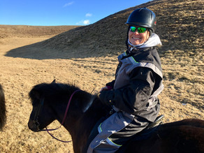 Inspiring Your Next - Icelandic Horse Ride