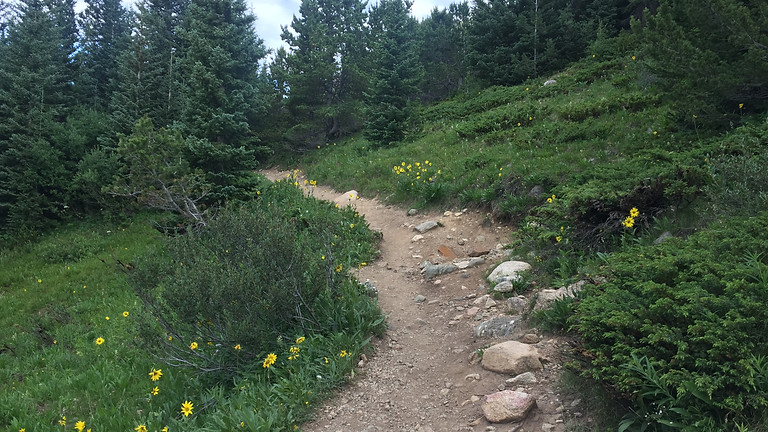 Setting Up Your Epic Hike (early)