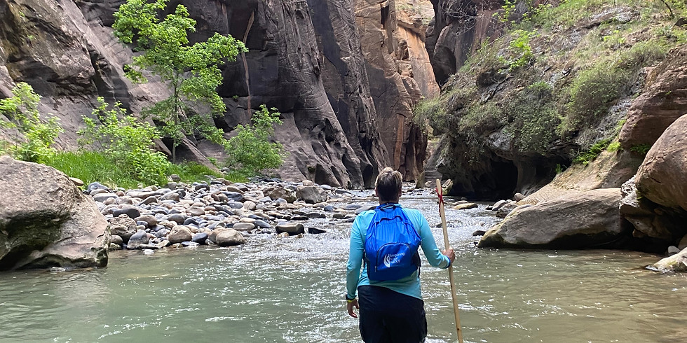 Our Next Active Adventure - an Epic Walk Tour or Hike!