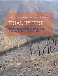 Trial by Fire.PNG