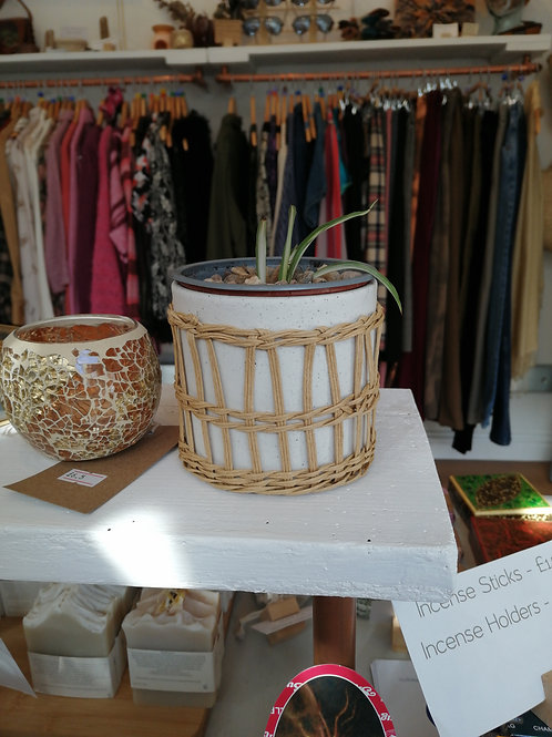 Speckled & Wicker Pot With Plant