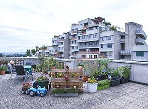Julia%20Gaisbacher_Terrassenhaussiedlung