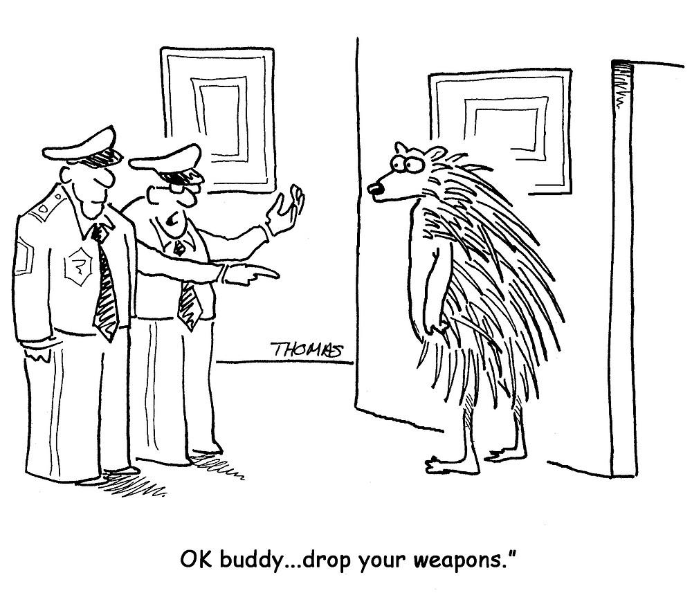 Porcupine Hold up