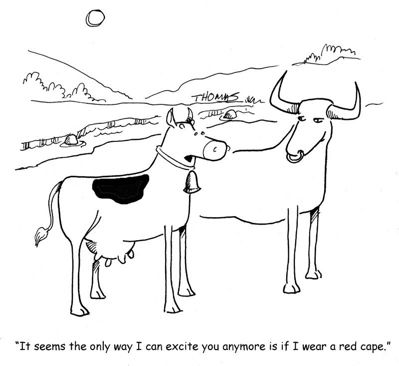 Cows and Red
