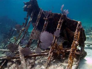 Finding Treasure Beneath the Sea