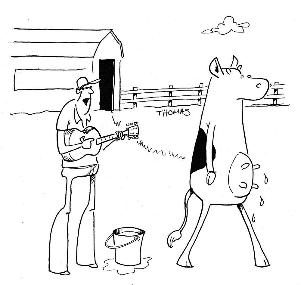Cow Busker