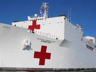 Floating Hospitals: An Overview of Hospital Ships
