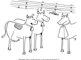 Wind Out Your Week with Some Cartoons!