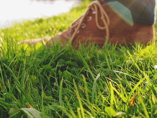 Grass as Far as the Eye Can See: A History of Grass Lawns