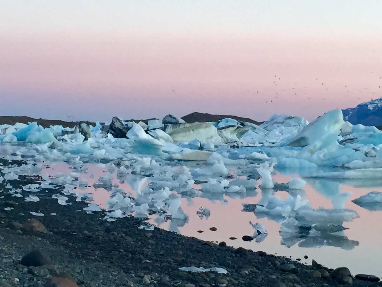 Laguna icebergs