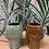 Thumbnail: TUMUAKI TIKI MUG (BROWN & GREEN)