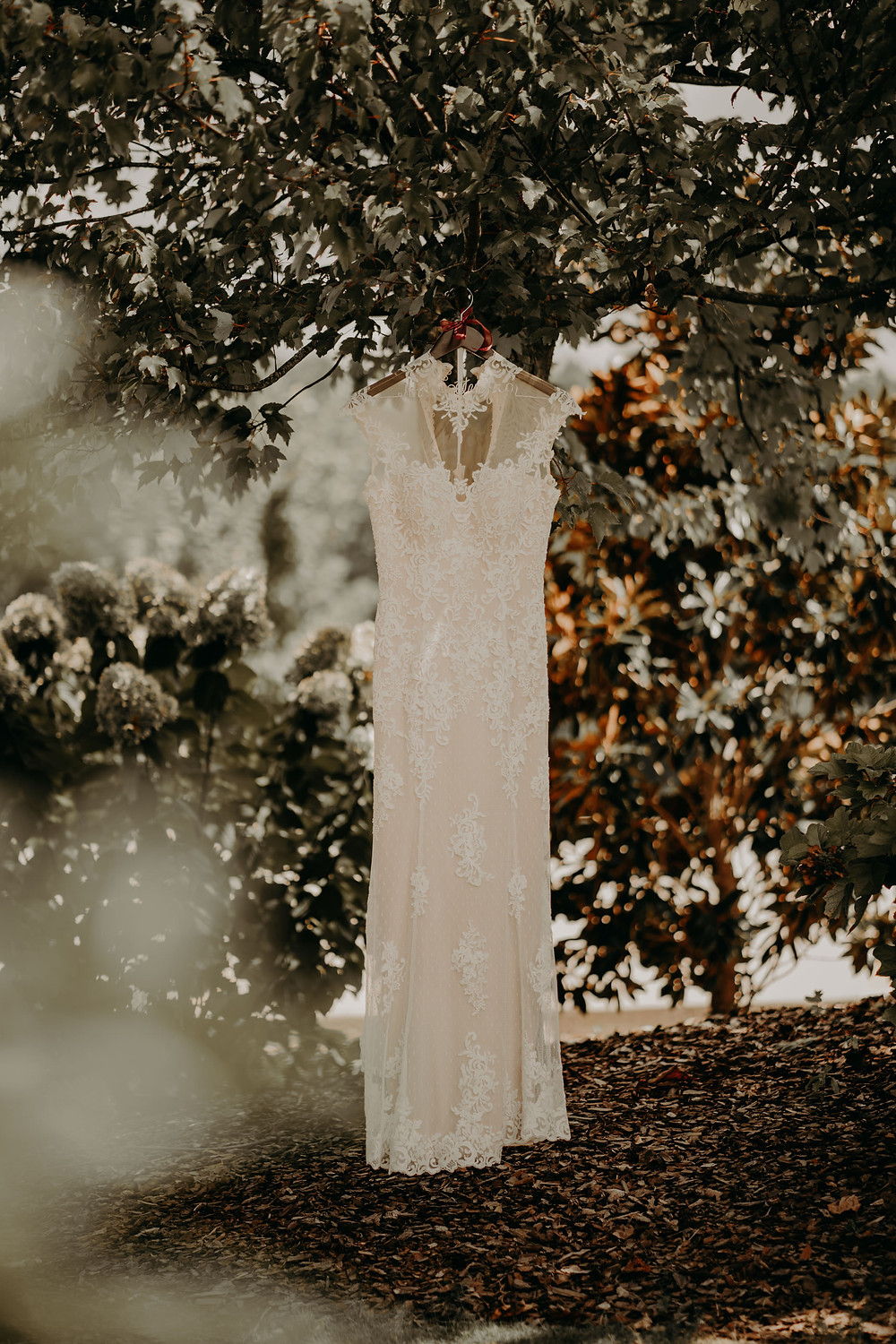 lace wedding dress in a hanger