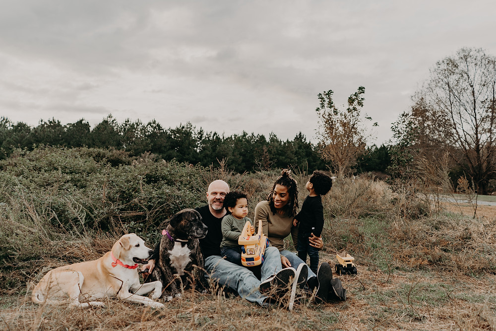 family of four having fun with their dogs