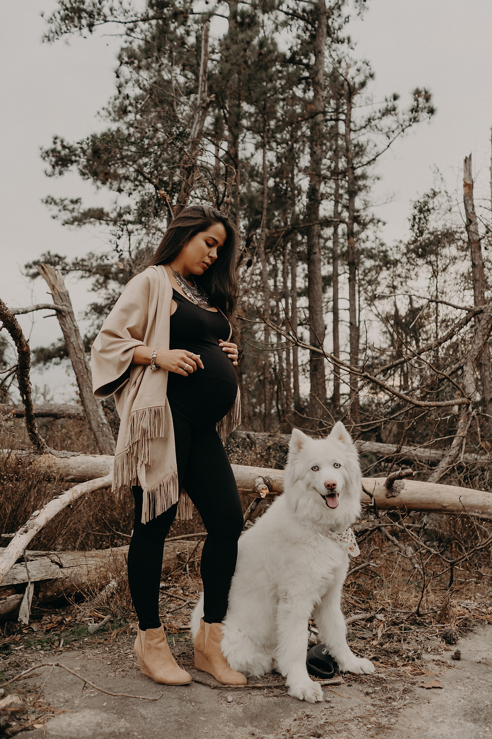 maternity session with a white husky