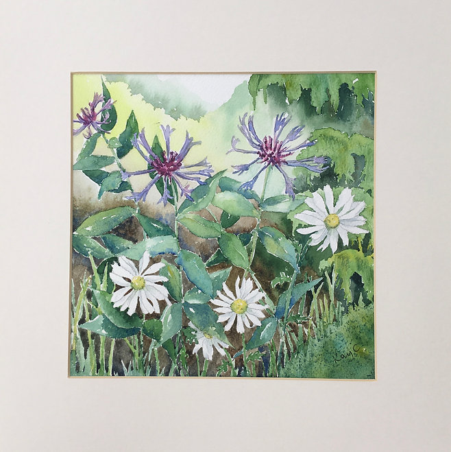 Cornflower and Daisy.JPEG