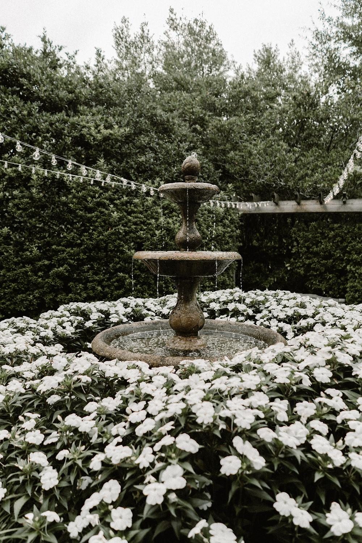 fountain in a garden