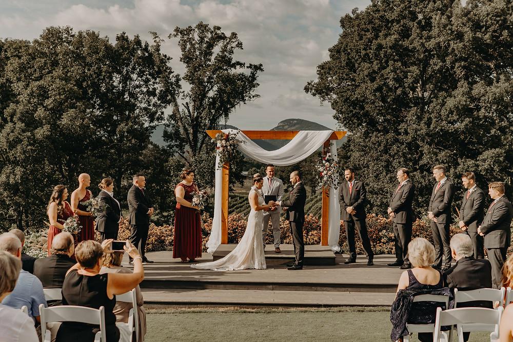 wedding ceremony in a vineyard