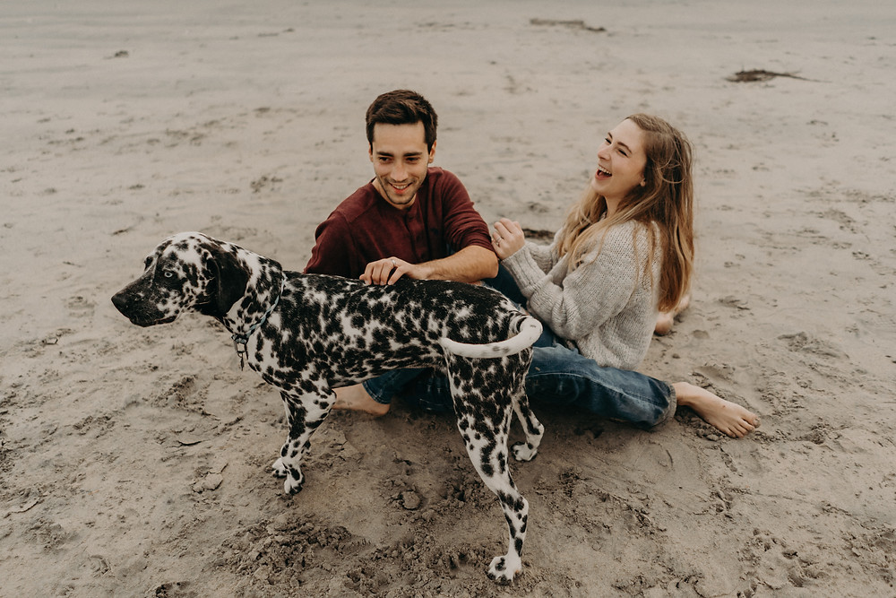 Couple playing with a dalmatian at the beach